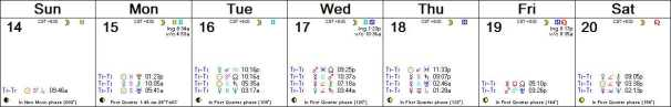 2016 W08 Calendar (Weekly)
