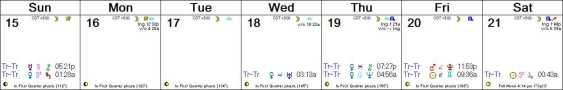 2016 W21 Calendar (Weekly)