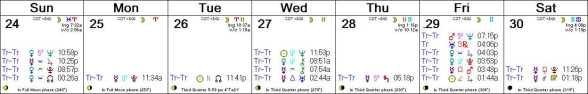 2016 W31 Calendar (Weekly)