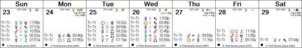 2016 W44 Calendar (Weekly)