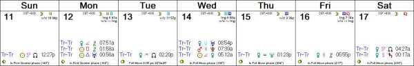 2016 W51 Calendar (Weekly)