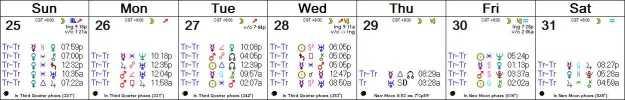 2016 W53 Calendar (Weekly)